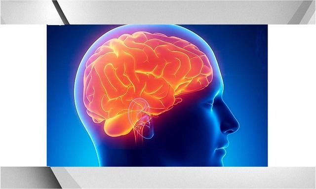 5 datos importantes que debes conocer sobre el Alzheimer