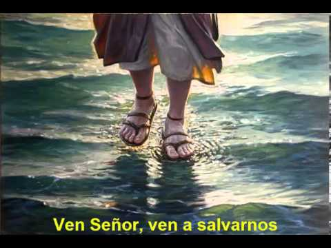 Mensaje del Obispo de Tuxpan: El Señor viene a salvarnos